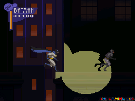 Chasing Catwoman
